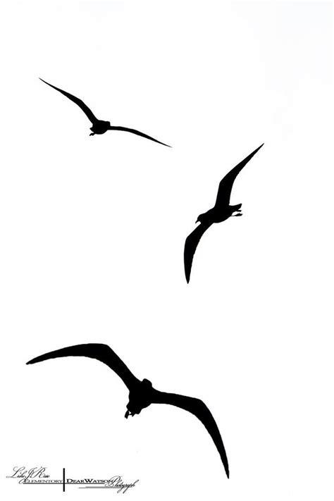 Bathroom Designs Ideas Best 10 Bird Silhouette Ideas On Pinterest Bird Stencil