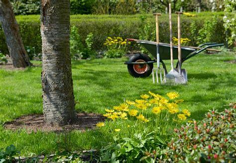 Was Machen Gegen Pilze Im Garten by Pflanzenschutz Tipps Zum Richtigen Einsatz Obi
