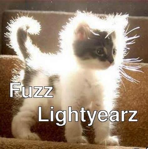 Cute Funny Cat Memes - 2048 cute cat meme