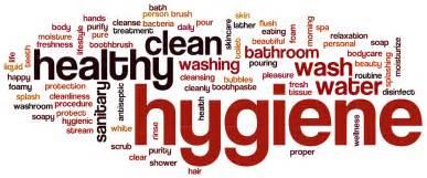 Toilet With Built In Bidet Hygiene Benefits Clear Water Bidets