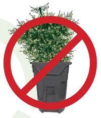 free city of chicago christmas tree recycling chicago on