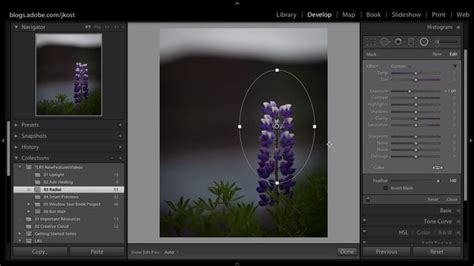 lightroom tutorial radial filter lightroom tutorials for beginners how to use radial