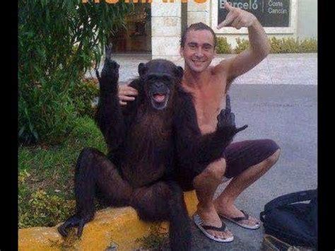 imagenes comicas de animales imagenes graciosas de la web vogv chistosas comicas y