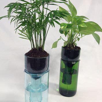 wine bottle planters best wine bottle planter products on wanelo