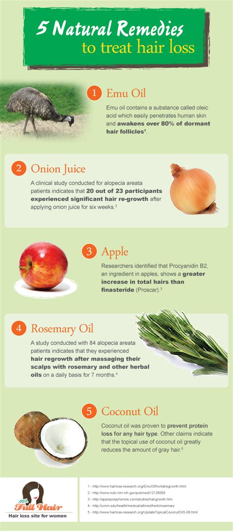 infographic 5 popular home remedies to treat hair