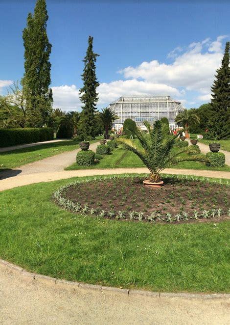 berlin botanical garden berlin dahlem botanical garden and botanical museum berlin