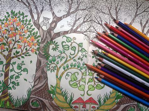 secret garden coloring book comprar resenha floresta encantada para pintar indice feminino