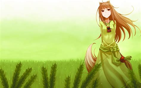 wolf and spice and wolf wallpapers hd