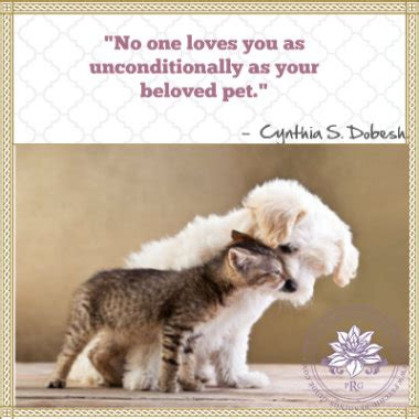 1 1 Animal Quotes Beruang loss of pet quotes