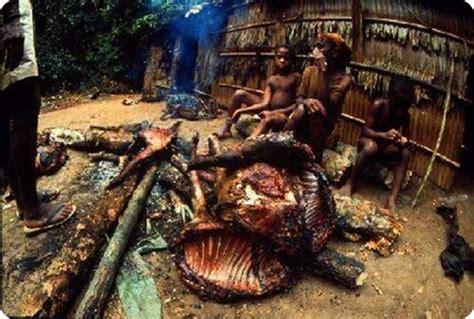 imagenes de la naturaleza raras 191 las comidas mas raras del mundo