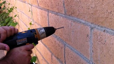 My Cheap Trellis Idea Youtube How To Attach Lights To Brick