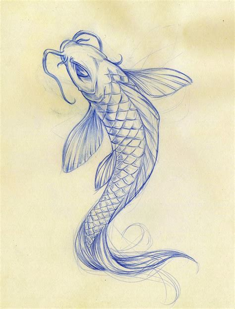 Drawing Koi Fish by 25 Best Ideas About Koi Fish Drawing On Koi