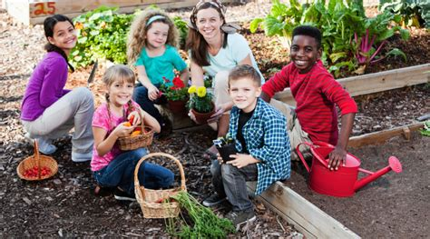 Gardening Needs Plant A Seed See What Grows Foundationhow Community