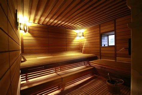 sauna in sauna with steam mato sauna