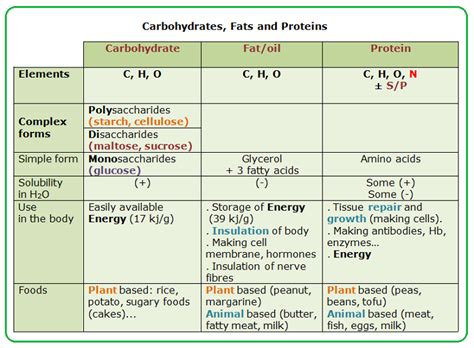 7 functions of carbohydrates carbohydrates function applecool info