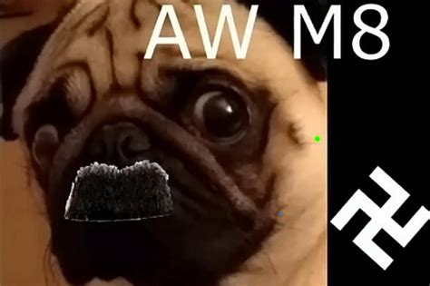 natzi pug pug taught salute and to react to anti semitism in sick daily