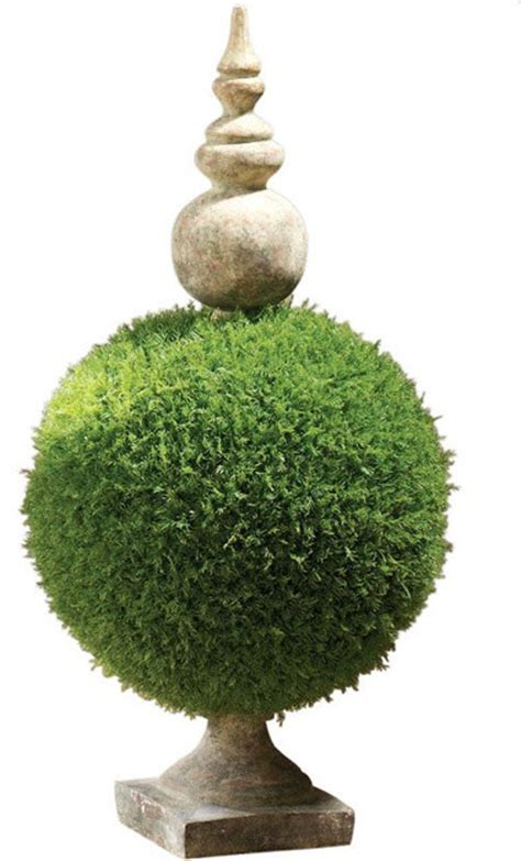 Moss In Planters by Moss Sphere Topiary Ii Traditional Indoor Pots And