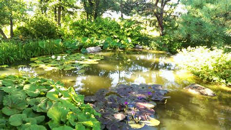 Chicago Botanical Garden Chicago Botanic Garden Hometuitionkajang