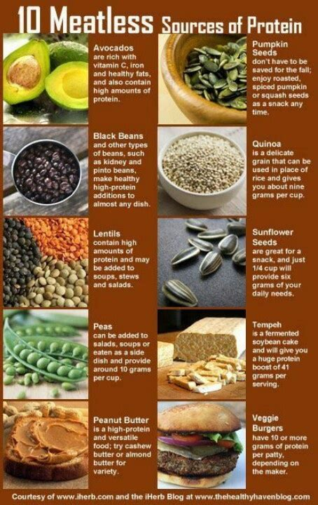 Sources Of Protein by Protein Sources Health Nut