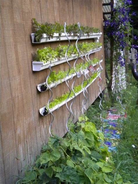 Gutter Vertical Garden 20 Best Diy Gutter Gardens Images On Gardening
