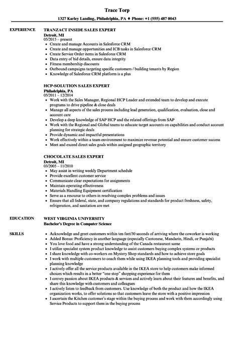 expert resume sles expert resume sles district administrator sle resume