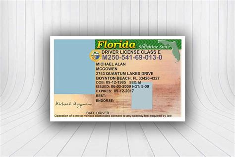 florida drivers license template florida division of motor vehicle impremedia net