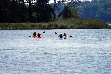 paddle boat rentals york pa 40 worth of canoe kayak pedal boat paddle board or