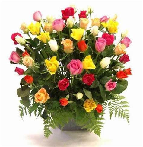imagenes de rosas sorprendentes flores ramo de flores