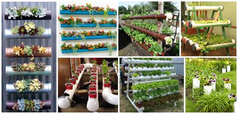 12 Amazing Pvc Pipe Planters To Liven Up Your Garden Pvc Garden Ideas