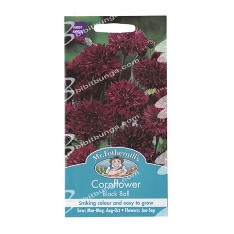 Benih Bunga Mr Fothergills Import Cornflower Blue benih cornflower black 250 biji mr fothergills
