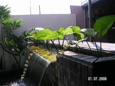 mengenal jenis jenis tanaman hias
