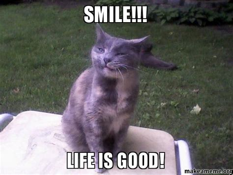 Life Is Great Meme - smile life is good make a meme