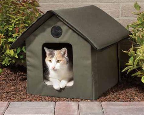 gatos en casa 191 las mascotas pueden quedar solas en casa durante tus