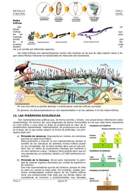 cadenas y redes troficas slideshare ecolog 205 a los seres vivos en su medio ambiente