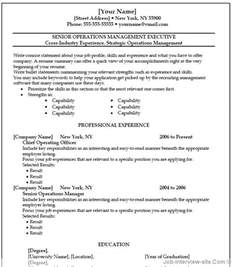 Templates For Resumes On Word Free 40 Top Professional Resume Templates