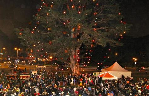 tree lighting events near me tree lighting in golden gate park is an annual event for