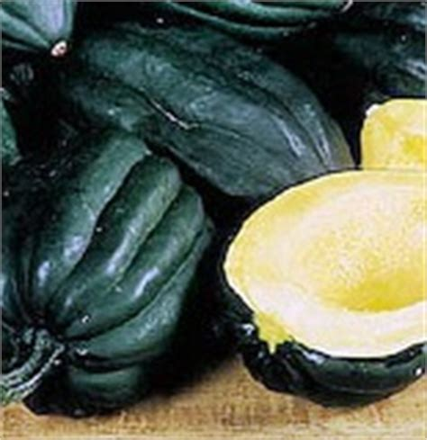 Table Squash by Heavenly Seed Products
