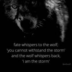 Lyrics Light My Fire 25 Best Wolf Quotes On Pinterest Wolf Sounds Wolf Howl