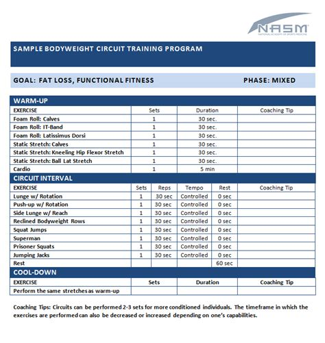 fitness program template free sle bodyweight circuit program personal