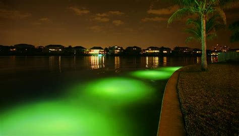 Underwater Landscape Lighting Oceanscapes In Orlando Fl