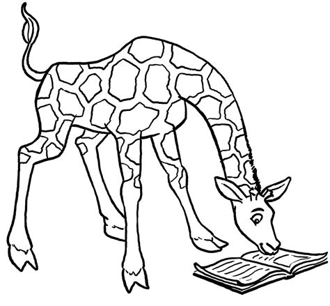 free coloring pages of giraffe outline