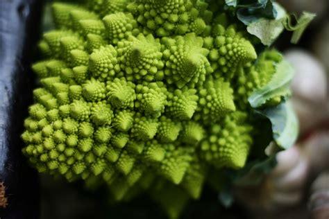 come cucinare il broccolo romanesco la ricetta di ottobre pasta broccolo romanesco e