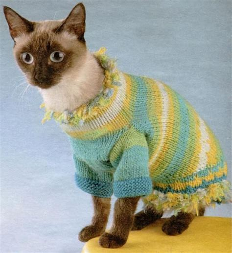 knitting pattern cat clothes 17 best images about pet clothes on pinterest free