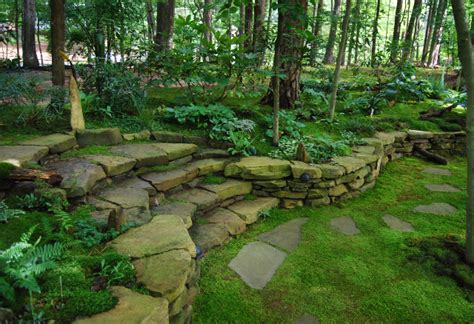 moss backyard preparing soils for moss a clean slate moss and stone
