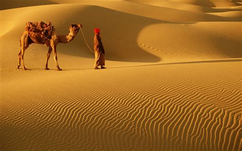 thar desert 20 fantastically romantic places photo gallery rough