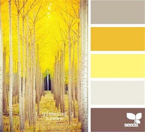 colors that compliment yellow yellow compliments color palettes