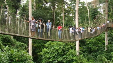 kakum national park visit ghana