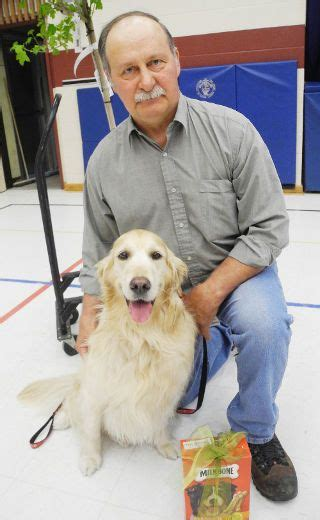 golden retriever therapy 59 best images about golden retriever therapy on therapy dogs service