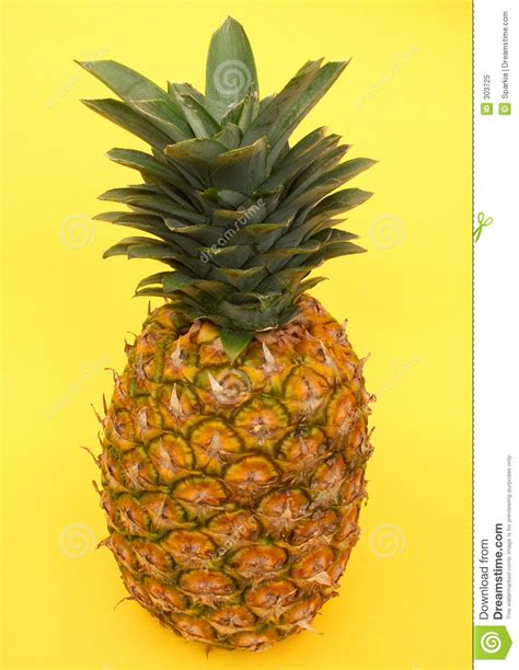 Yellow Pineapple L by Pineapple Royalty Free Stock Photo Image 303725