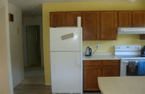 Kitchen Cabinets With Hinges Exposed by Exposed Hinges
